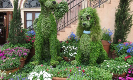 Lots to Love at the 2016 Epcot Flower and Garden Festival