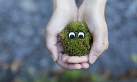 10 Activities to Celebrate Earth Day and Beyond