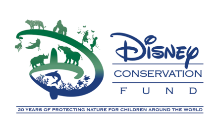 Disney Conservation Fund Celebrates 20 Years with New Initiatives