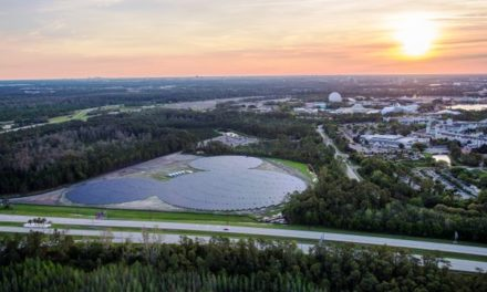 Disney World Adds Mickey Shaped Solar Farm
