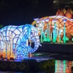 Rivers of Light Finally Sets Sail at Disney's Animal Kingdom