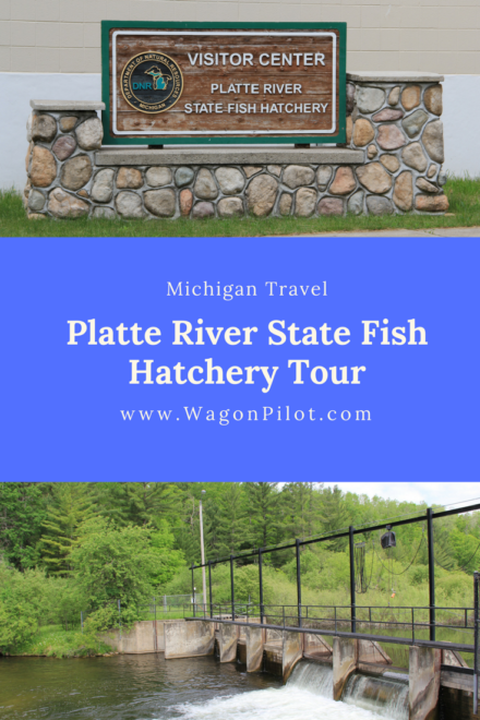 Platte river state fish hatchery wagon pilot adventures for Fish hatchery michigan