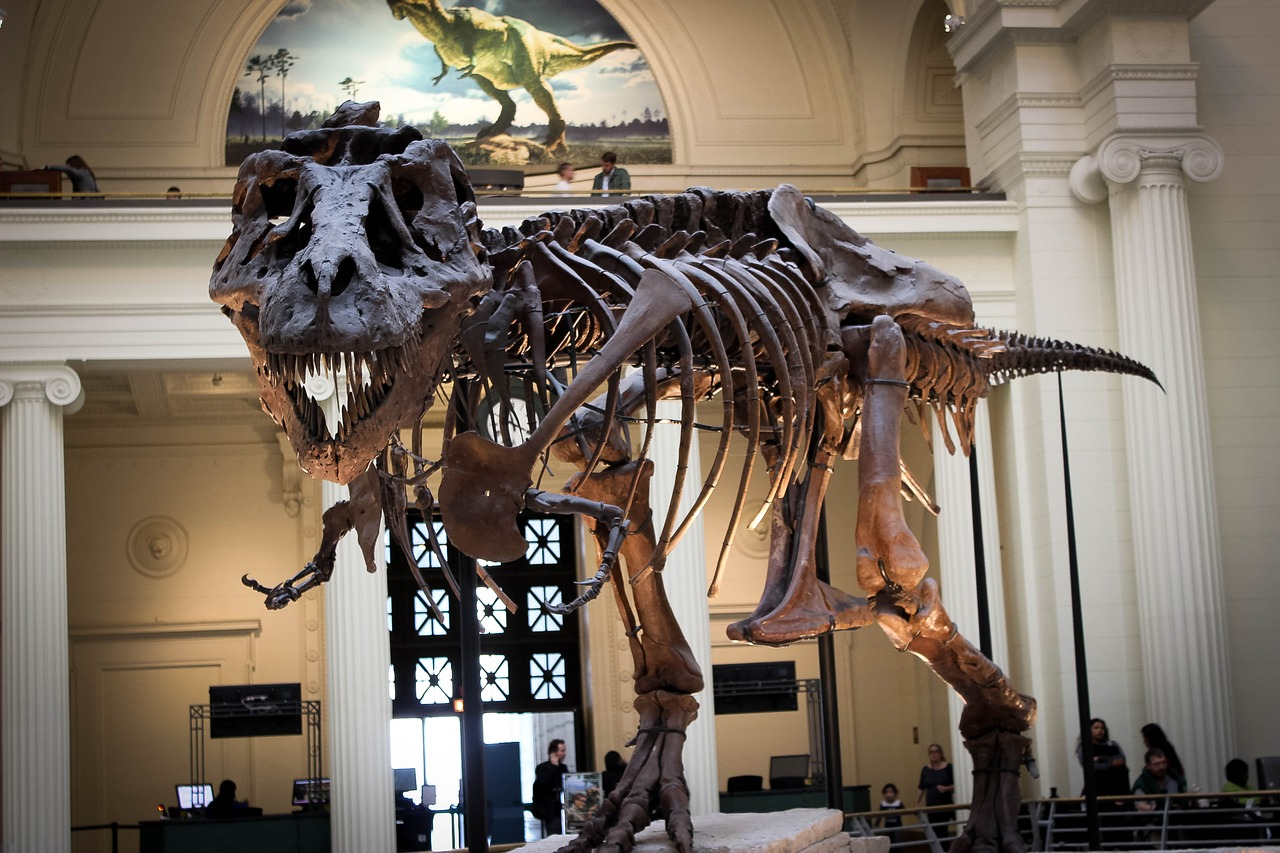 Museum deals in Chicago, IL: 50 to 90% off deals in Chicago. Admission at International Museum of Surgical Science (Up to 50% Off). Visit for One, Two, or Four to the Chicago History Museum (24% Off). General Admission for One, Two, or Four at American Writers Museum (Up to 33% Off).
