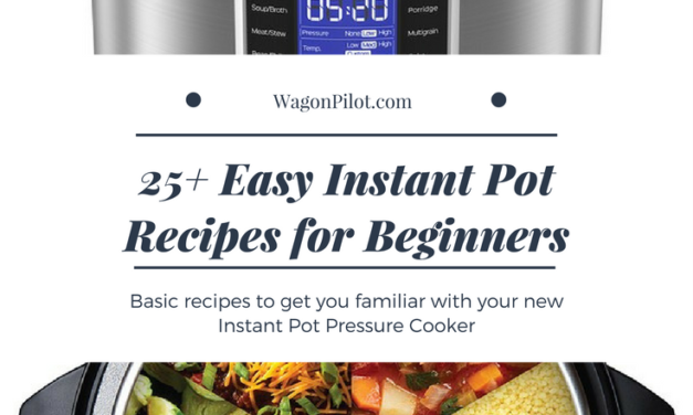 25+ Easy Instant Pot Recipes for Beginners