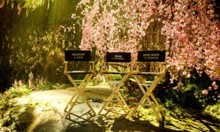 Maleficent 2 Film Production Underway