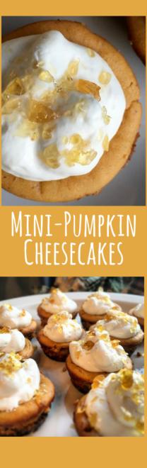 Mini-pumpkin cheesecakes