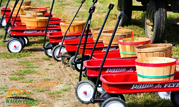 Tuttle Orchards has Evolved into a True Year Round Farm Serving the Local Community