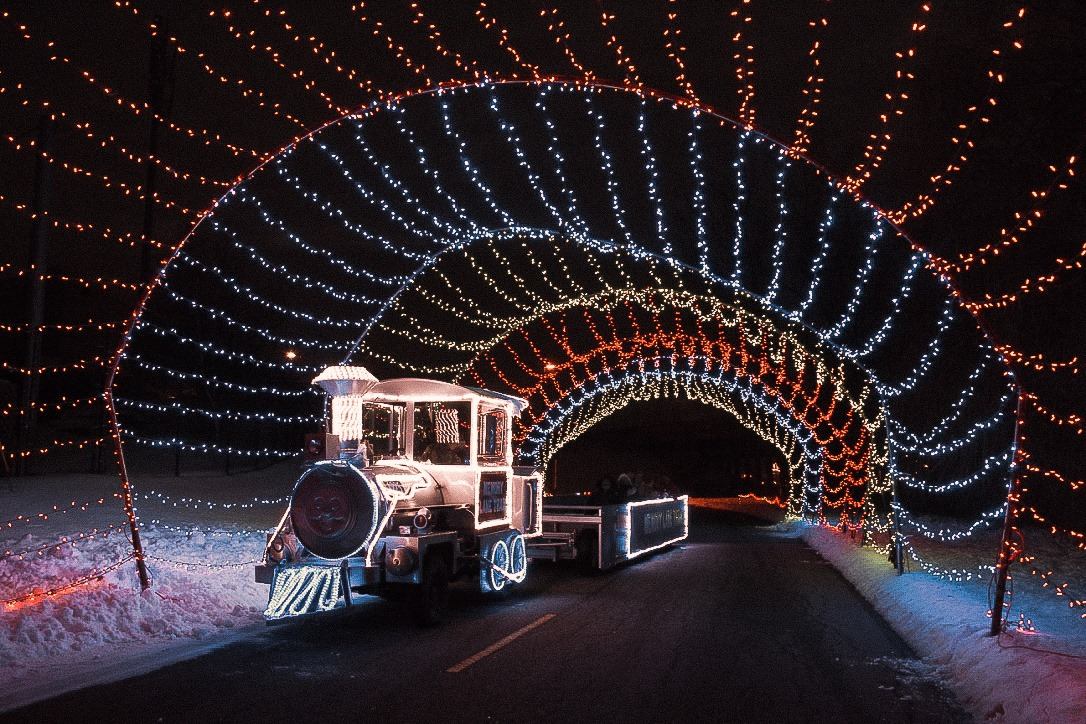 Drive-Thru Christmas Light Displays