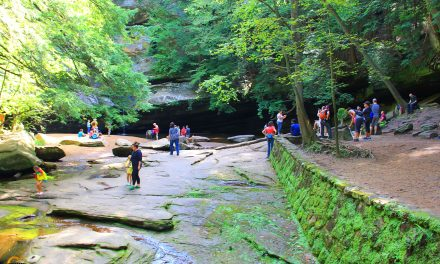 Hocking Hills State Park Cedar Falls Hiking Trail