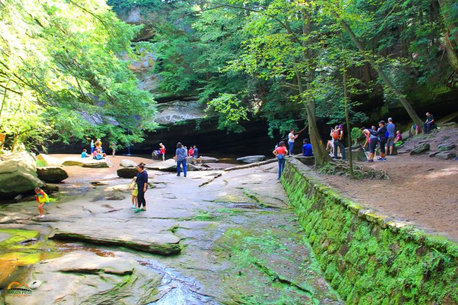 Hocking Hills Cedar Falls Hiking Trail