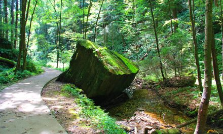 Hocking Hills Conkles Hollow Nature Preserve Hiking Trail